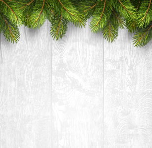 Organised by Christmas Planner